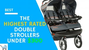 The 5 Highest Rated Double Strollers Under $300